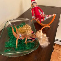 Elf on the Shelf: Jell-O Fight